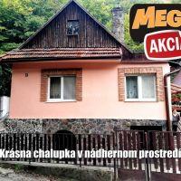 Rodinný dom, Pukanec, 649 m², Čiastočná rekonštrukcia