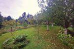 záhrada - Handlová - Fotografia 2
