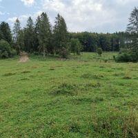 Trvalý trávnatý porast, Snežnica, 2099 m²