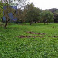 Trvalý trávnatý porast, Veľké Uherce, 798 m²