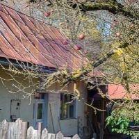 Rodinný dom, Poniky, 80 m², Pôvodný stav