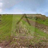 Orná pôda, Socovce, 1338 m²