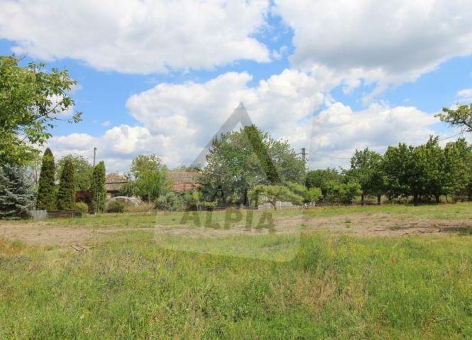 záhrada - Detvianska Huta - Fotografia 1