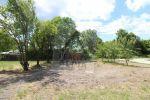 záhrada - Detvianska Huta - Fotografia 4