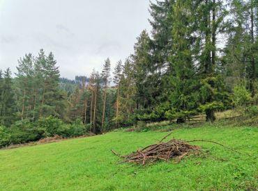Poľnohospodársky pozemok na predaj v Snežnici 1000 m2,  8400 €