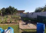 Na predaj- záhrada Senec 202m2