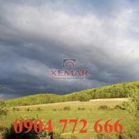 Lesné pozemky, Dúbravica, 21000 m², Pôvodný stav