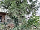 Záhradná chatka v peknom prostredí