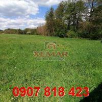 Trvalý trávnatý porast, Veľký Krtíš, 35000 m², Pôvodný stav