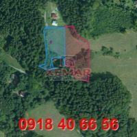 Trvalý trávnatý porast, Tajov, 6662 m², Pôvodný stav