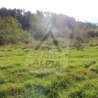 Trvalý trávnatý porast, Domaniža, 4235 m²