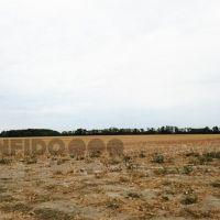 Orná pôda, Pusté Úľany, 158650 m², Pôvodný stav
