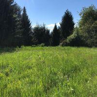 Záhrada, Ladomerská Vieska, 1582 m²