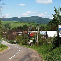 Lesné pozemky, Hostovice, 10129 m²