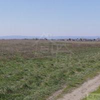 Orná pôda, Reca, 8800 m², Pôvodný stav