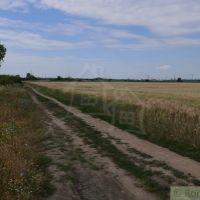 Orná pôda, Pezinok, 9100 m², Pôvodný stav