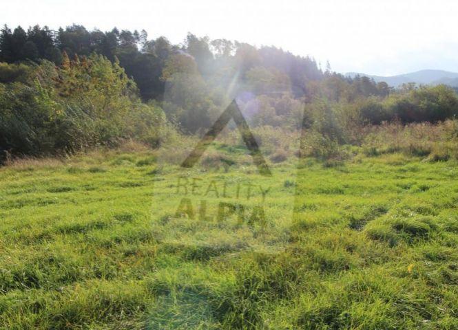 trvalý trávnatý porast - Domaniža - Fotografia 1