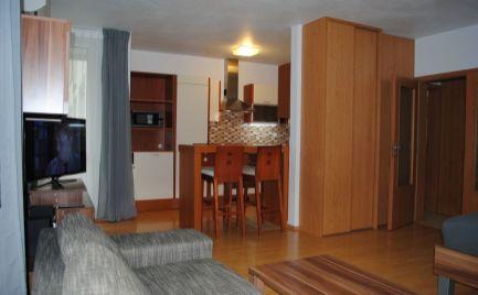 Kompletne zariadený 1-izb.byt s loggiou, kobkou a s garážovým státím.