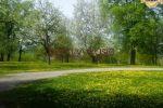 Iný objekt - Žarnov - Fotografia 10