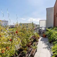 4 izbový byt, Rovinka, 77 m², Novostavba