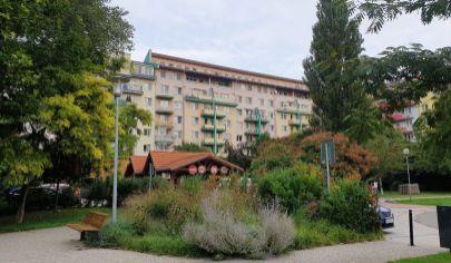 Prenájom - Pekný, veľký 3-izbový byt vo vynikajúcej lokalite, BA- Petržalka, Šuštekova ul.