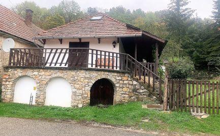 MAĎARSKO - TERESZTENYE 5 IZBOVÝ RODINNÝ DOM S VÍNNOU PIVNICOU, POZEMOK 765 M2