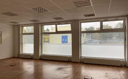 Sklad s predajňou na prenájom, BA-Ružinov, 507 m2