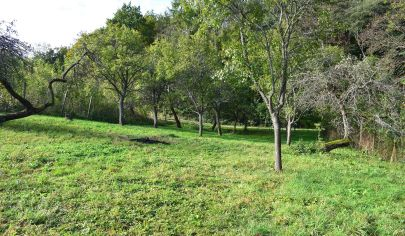 Pozemok 852 m2 Poriadie, Myjavské kopanice