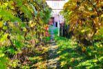 Rodinný dom - Fiľakovo - Fotografia 16