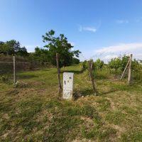 Záhrada, Bratislava-Nové Mesto, 2779 m²