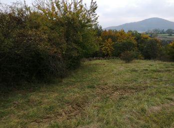 Na predaj pozemok o rozlohe 1743m2 v obci Košariská v časti Trvajova dolina