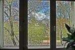 3 izbový byt - Košice-Staré Mesto - Fotografia 19
