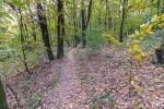 rekreačný pozemok - Bratislava-Dúbravka - Fotografia 4
