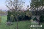 rekreačný pozemok - Melčice-Lieskové - Fotografia 13