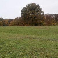 rekreačný pozemok
