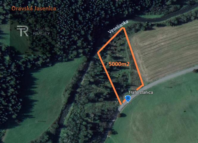 rekreačný pozemok - Oravská Jasenica - Fotografia 1