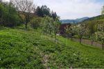 orná pôda - Udiča - Fotografia 10