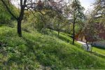 orná pôda - Udiča - Fotografia 12
