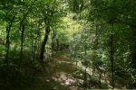 orná pôda - Udiča - Fotografia 14