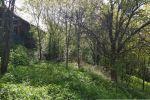 orná pôda - Udiča - Fotografia 17