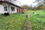 Rodinný dom - Hnúšťa - Fotografia 7