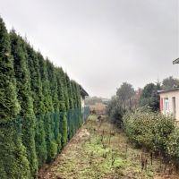 Záhrada, Lužianky, 2624 m², Pôvodný stav