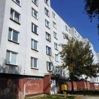 3 izbový byt, Sečovce, 1 m², Pôvodný stav