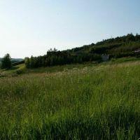 Záhrada, Slovenská Volová, 800 m²