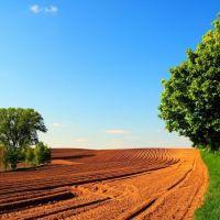 Poľnohospodárska pôda, Bardejov