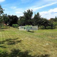 Záhrada, Vráble, 800 m²