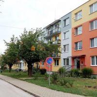 1 izbový byt, Tlmače, 36 m², Pôvodný stav
