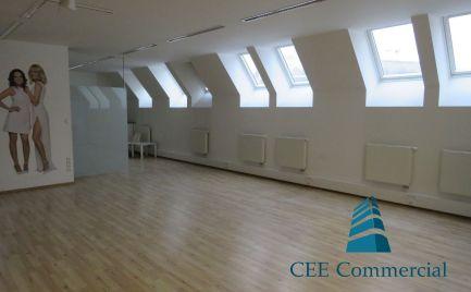 Nebytový priestor na prenájom, 252 m2, Michalská ul.