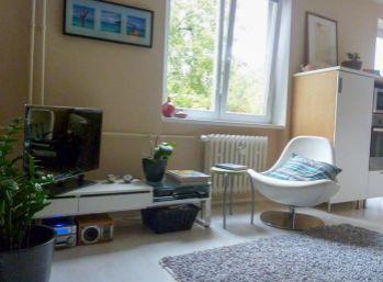 ZAUJÍMAVÝ 1 izbový byt Ostredky
