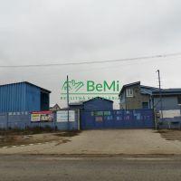Iné, Šintava, 5476 m², Pôvodný stav